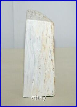 Amazing Pair Of 180 Million Year Old Pretrified Fossil Wood Bookends Door Stops