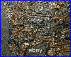 Authentic Germany Messel pit bird fossil, Eocene (47 million years old) RARE