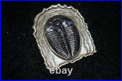 RARE 1+ MILLION YEAR OLD Trilobites FOSSIL STERLING SILVER BROOCH/CHARM